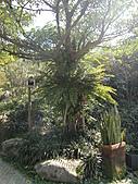 三富休閒農場 紫屋森林:CIMG2283.JPG