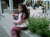 葳葳2008:DSCF1509.JPG