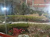 鄉村風96-大豪宅:DSCF0561.JPG