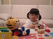 葳葳2006:DSCF0610.JPG