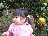 葳葳2005:DSCF0411.JPG
