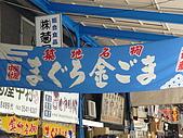 09日本東京群馬5天10周年之旅--Day2:P1010841.JPG