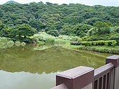 97.07.12竹子湖、陽明書屋、魚路古道、紅樓:P1020342.JPG