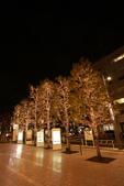 東京散策一日目=スカイツリーとの出会い:街道ツリー