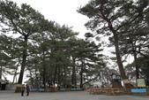 テルオが歩いたり、見たりした風景スナップ:小田原城公園