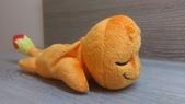 神奇寶貝 (精靈寶可夢)睡覺系列ZZz:小火龍側面
