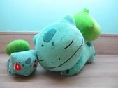 神奇寶貝 (精靈寶可夢)睡覺系列ZZz:妙蛙種子玩偶