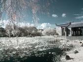 古坑休息站;嘉義縣表演藝術中心:R0019577.jpg