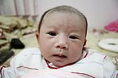 小貝比返家第三週:_MG_6331