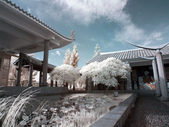 古坑休息站;嘉義縣表演藝術中心:R0019591.jpg