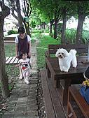 興隆毛巾觀光工廠&虎尾糖廠:R4041059.jpg