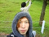 2010年6月5日桃園復興鄉綠光森林一日遊:兩個認真的好孩子