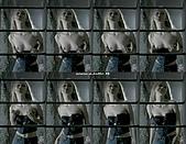 綺拉·奈特莉 Keira Knightley:Keira Knightley 綺拉奈特莉.jpg