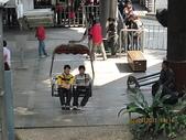 2011新春~ 澳珠圳之旅:2011新春 ~ 澳珠圳之旅 226.jpg