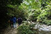 大陸旅遊:蛇年 。北越、廣西之旅 611