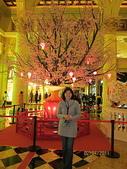 2011新春~ 澳珠圳之旅:2011新春 ~ 澳珠圳之旅 272
