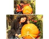 2011新春~ 澳珠圳之旅:10