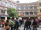 2011新春~ 澳珠圳之旅:2011新春 ~ 澳珠圳之旅 301
