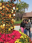 2011新春~ 澳珠圳之旅:2011新春 ~ 澳珠圳之旅 061