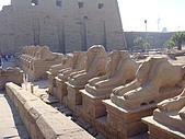 2008神秘的古文明6:20081031-006.JPG