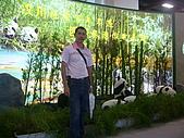 2008海峽兩岸台北旅展:第三屆2008年「國際旅展」台北行 065.jpg
