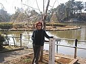 2004日本伊豆半島 東京廸斯耐:day5 千葉公園_1901.