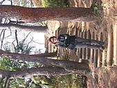 2004日本伊豆半島 東京廸斯耐:day5 千葉公園_1899.
