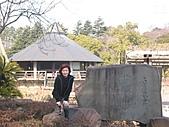 2004日本伊豆半島 東京廸斯耐:day5 千葉公園_1897.