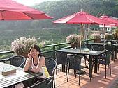 20060812桃園復興_東眼山:IMGP1270.JPG