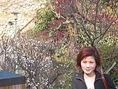 2004日本伊豆半島 東京廸斯耐:day2 熱海梅園_1669.