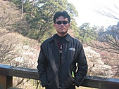 2004日本伊豆半島 東京廸斯耐:day2 熱海梅園_1668.
