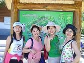 20060812桃園復興_東眼山:IMGP1166.JPG