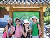 20060812桃園復興_東眼山:IMGP1167.JPG