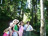 20060812桃園復興_東眼山:IMGP1168.JPG