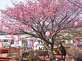 2004日本伊豆半島 東京廸斯耐:day3土肥金山_1771.