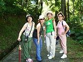 20060812桃園復興_東眼山:IMGP1169.JPG