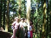 20060812桃園復興_東眼山:IMGP1171.JPG