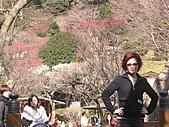 2004日本伊豆半島 東京廸斯耐:day2 熱海梅園_1662.