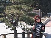 2004日本伊豆半島 東京廸斯耐:day3堂之島_1758.J
