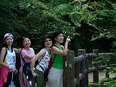 20060812桃園復興_東眼山:IMGP1177.JPG