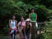 20060812桃園復興_東眼山:IMGP1178.JPG