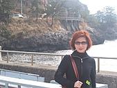 2004日本伊豆半島 東京廸斯耐:day3堂之島_1755.J