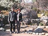 2004日本伊豆半島 東京廸斯耐:day2 熱海梅園_1656.