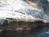 2004日本伊豆半島 東京廸斯耐:day3堂之島_1749.J