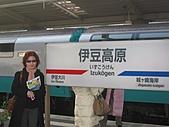 2004日本伊豆半島 東京廸斯耐:子號_1691