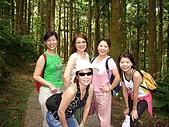 20060812桃園復興_東眼山:IMGP1184.JPG