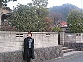 2004日本伊豆半島 東京廸斯耐:day3河津櫻花祭_1727