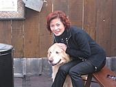 2004日本伊豆半島 東京廸斯耐:day3河津櫻花祭_1724