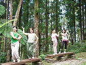 20060812桃園復興_東眼山:IMGP1200.JPG