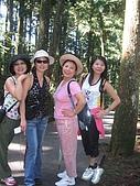20060812桃園復興_東眼山:162_6204.JPG